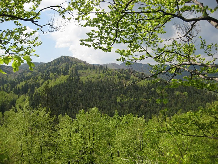 Клуб любителей горного отдыха зов гор